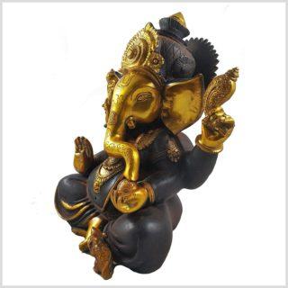Ganesha braungold 9kg Seitenansicht links