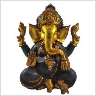 Ganesha braungold 9kg Vorderansicht