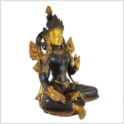 Grüne Tara nepalbraun 2,9kg Seitenansicht Rechts