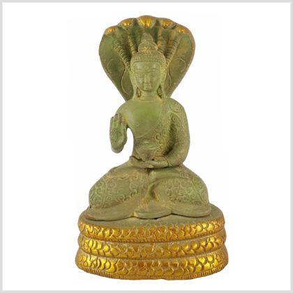 Nag Buddha Mucilanda 1,5kg hellgrün Vorderansicht