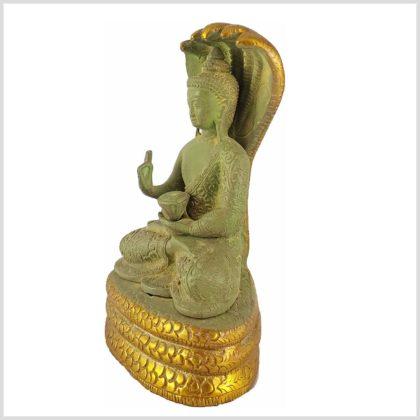 Nag Buddha Mucilanda 1,5kg hellgrün Seitenansicht Links