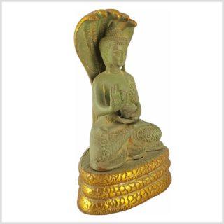 Nag Buddha Mucilanda 1,5kg hellgrün Seitenansicht