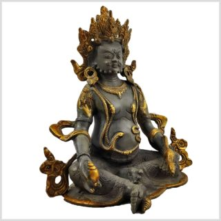 Dzambhala Nepalgrau Seitenansicht