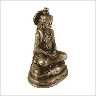 Hanuman Messing Seite