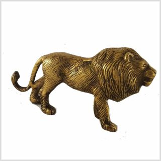 Löwe Seitenansicht