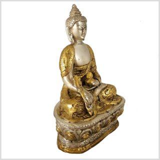 Medizinbuddha Dragon versilbert 17cm 1kg Seitenansicht