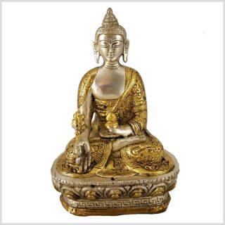 Medizinbuddha Dragon versilbert 17cm 1kg Vorderansicht