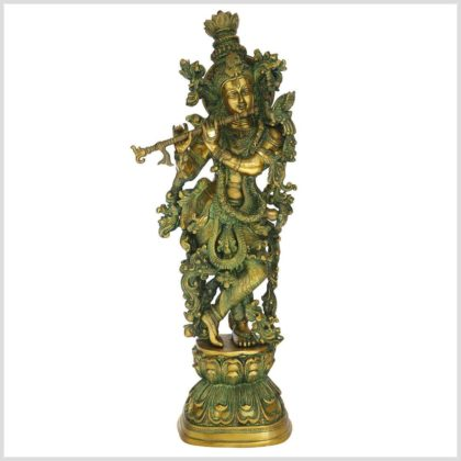 Krishna Messing 16kg Limettengrün Vorderansicht