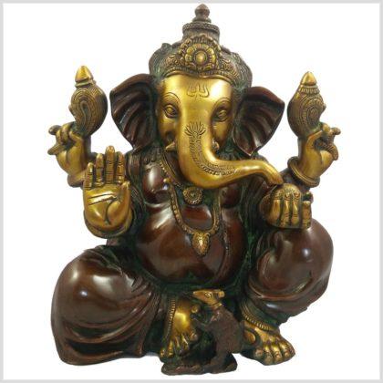 Ganesha braungrün 11kg Vorne