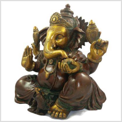 Ganesha braungrün 11kg Seite links