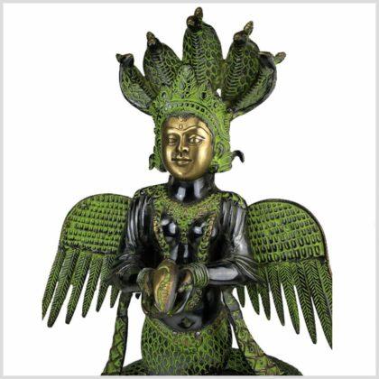 Nag Kanya 10kg antikgrün Gesicht