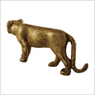 Panther Seite hinten